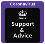 Government support and advice